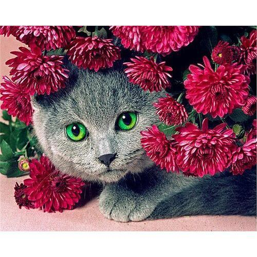 Flower Kitty - DIY Oil Painting on Canvas - Paint By Numbers-EasyWhim