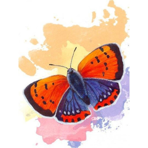 Orange Purple Butterfly - DIY Oil Painting on Canvas - Paint By Numbers-EasyWhim
