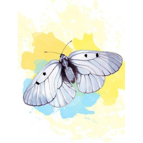 Pure Butterfly - DIY Oil Painting on Canvas - Paint By Numbers-EasyWhim