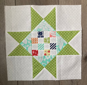 Shine On Sampler - Month 11