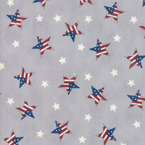 Land That I Love: Tossed Flag Stars Grey