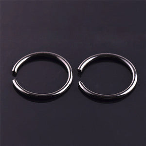 40 Piece Fake Nose Ring