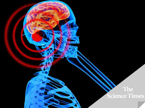 Science Times Article Mobile Phones Causing Brain Tumor - Italian Court Rules
