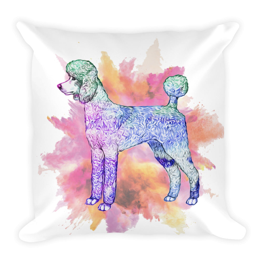 Color Square Pillow