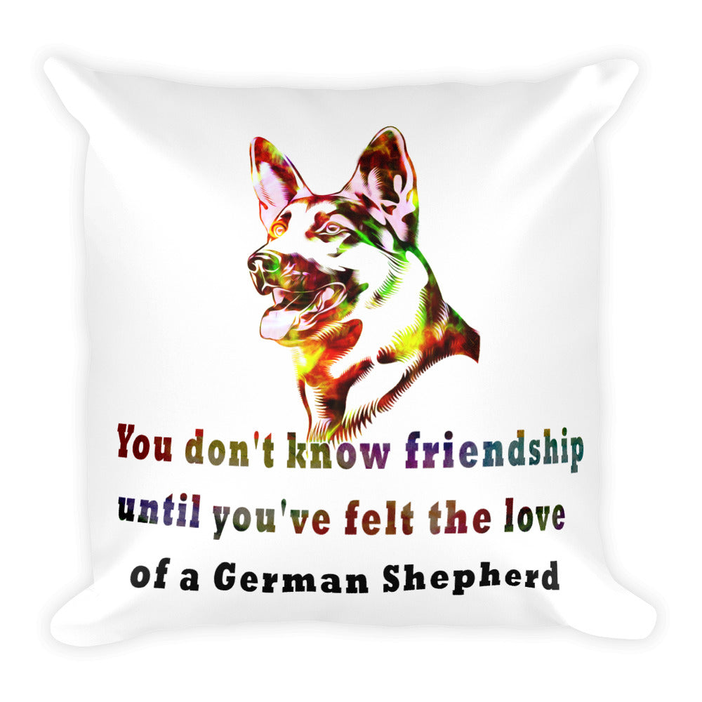 Friendship Square Pillow