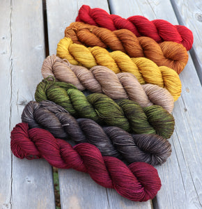 Laurel Nylon Fingering - 4th Doctor's Scarf Gradient Set of (7) 2 oz skeins