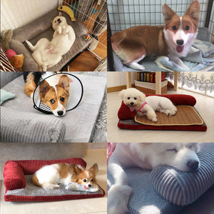 NEW Anti-Anxiety Orthopedic Calming Dog Bed