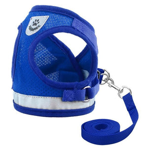Lightweight Mesh Harness (+ FREE LEASH!)
