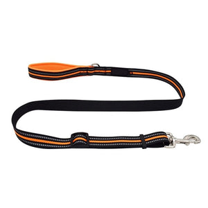 Heavy Duty Reflective Walking Leash