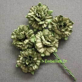 Carnations - Dark Green