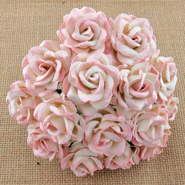 Chelsea Roses - 2 Tone Baby Pink/Ivory (5pk)