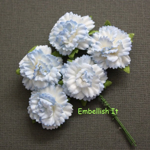 Carnations - 2 Tone Baby Blue