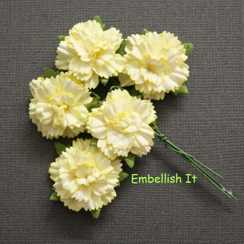 Carnations - Lemon