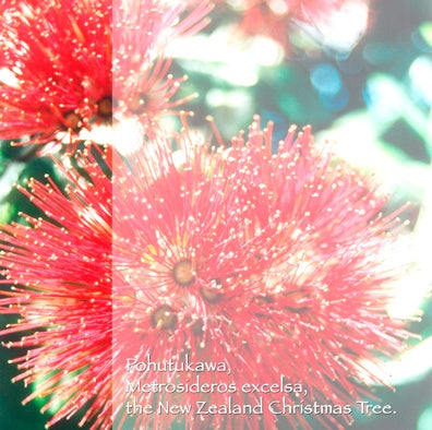 Craft Co - NZ Papers - Textures & Iconic Images - 12x12 Paper Pohutukawa