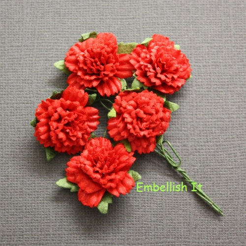 Carnations - Red
