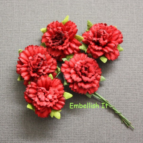 Carnations - Deep Red