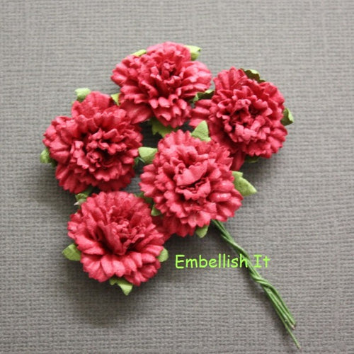 Carnations - Deep Coral