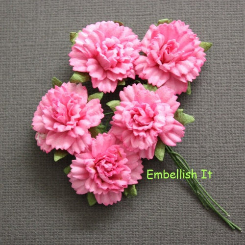 Carnations - Pink