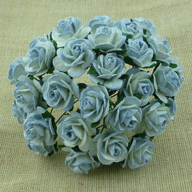 Open Roses - 2 Tone Antique Blue