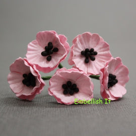 Poppies - Baby Pink
