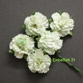 Carnations - Pale Lime