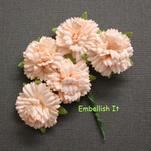 Carnations - Light Peach