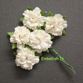 Carnations - Off-White