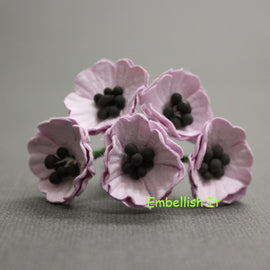 Poppies - Lilac