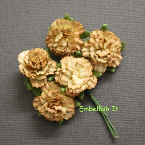Carnations - Light Brown