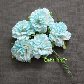 Carnations - 2 Tone Teal