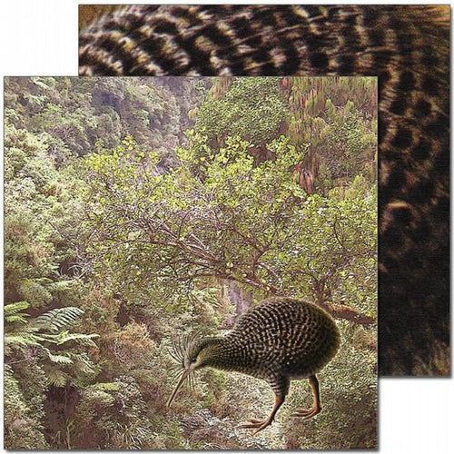 Craft Co - Pavlova NZ Birds - 12x12 Paper Litte Spotted Kiwi (PV14025)