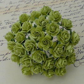 Open Roses - Lime Green