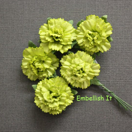 Carnations - Lime