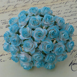 Open Roses - 2 Tone Light Turquoise