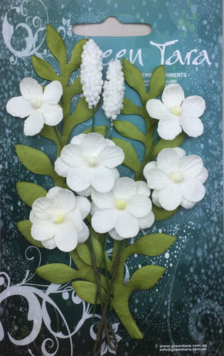 Green Tara Flowers - Primrose - White