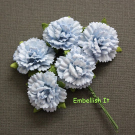 Carnations - Baby Blue