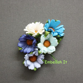 Chrysanthemums - Mixed Blue, Aqua and White