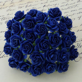 Open Roses - Royal Blue