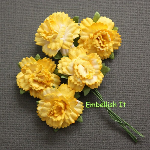 Carnations - Yellow