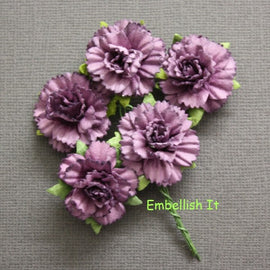 Carnations - Purple
