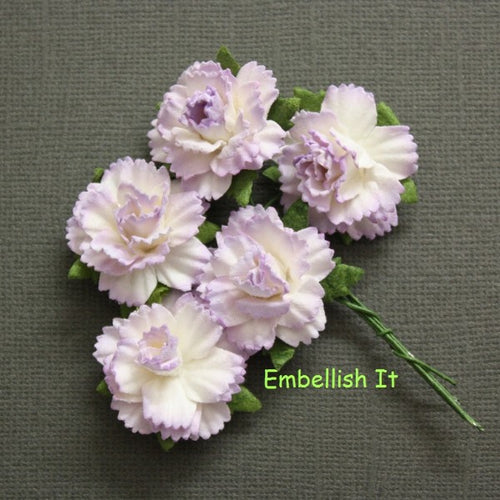 Carnations - 2 Tone Pale Lilac