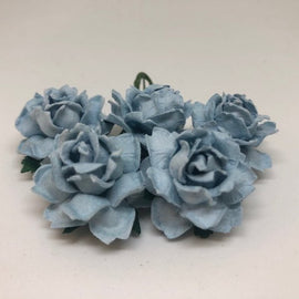 Cottage Roses - Baby Blue