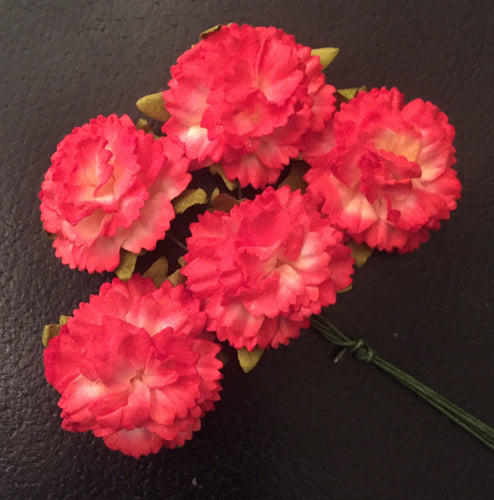 Carnations - 2 Tone Red Cream