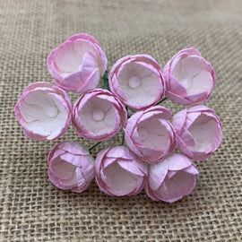Buttercups - 2 Tone Baby Pink & Ivory (10pk)