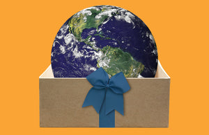 7 Christmas gift ideas if you are worried about the climate