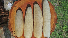 #1 All Natural Farm Grown Luffa Sponges (Choose Your Size)