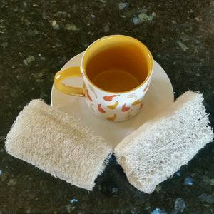 The Best Dish Washing Sponge Ever!