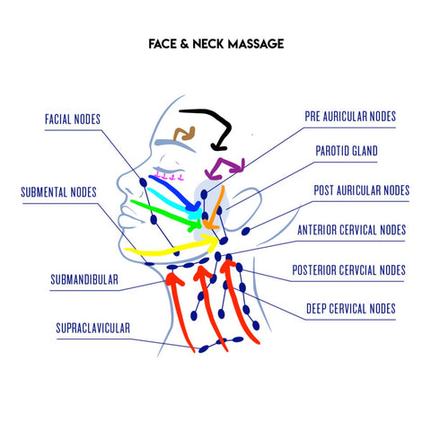 face and neck massage lymphatic drainage bright body