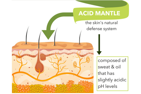 bright body acid mantle skin anatomy and physiology