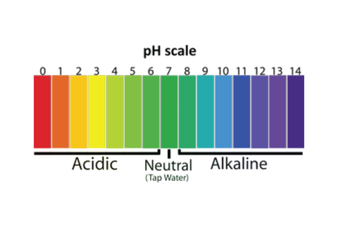 Bright Body pH Scale Healthy Hair Scalp Skin